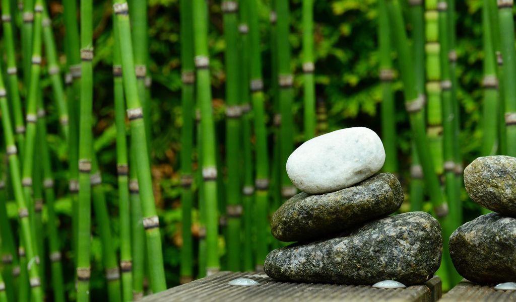 Hormonegyensúly tanácsadás